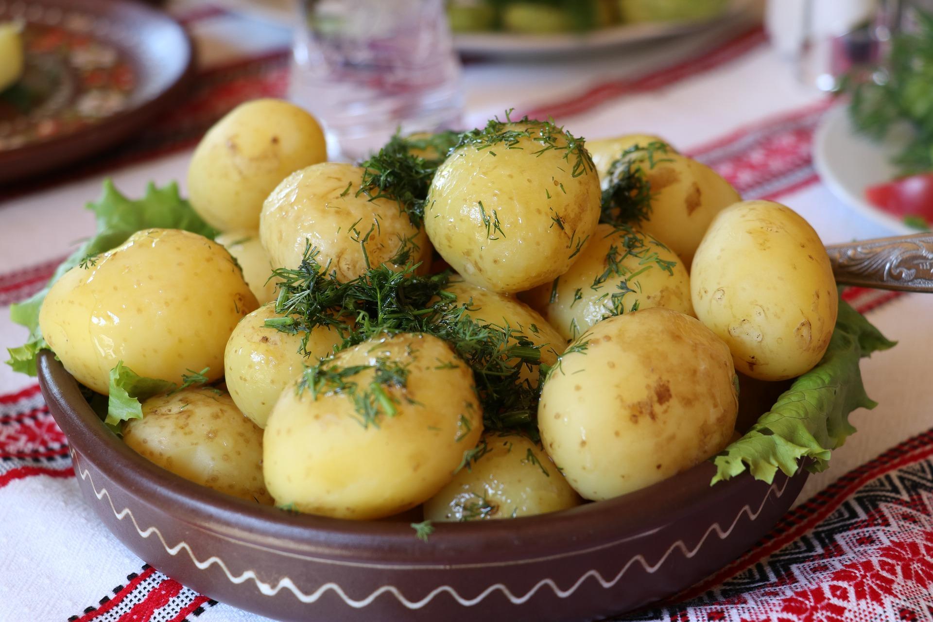 salade de pomme de terre en allemagne